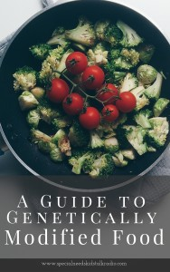 A Guide to Genetically Modified (1)