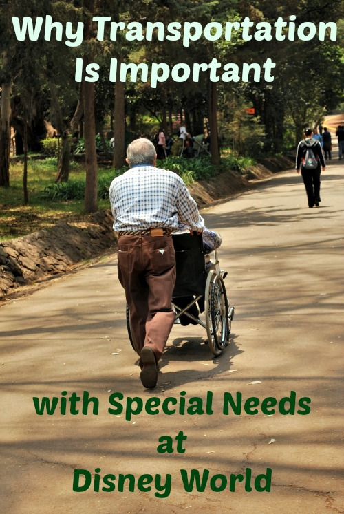 transportation with special needs