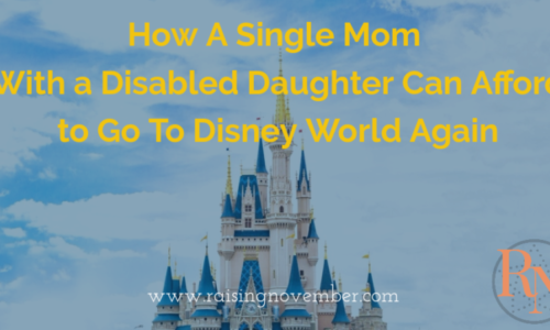 single mom can afford disney vacation